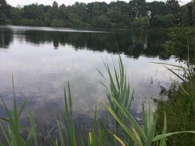 Angler_Wanderer_Natur_4